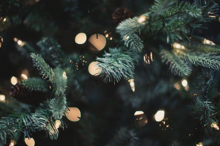 Christmas lights 1