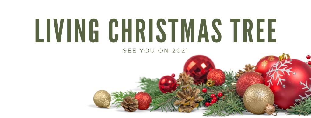 Living Christmas Tree 2020